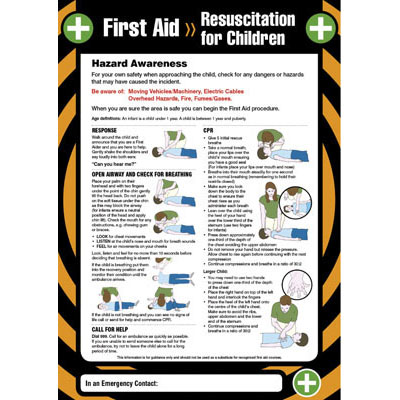 essay on safety and first aid 10 question first-aid basics and cpr/aed review quiz.
